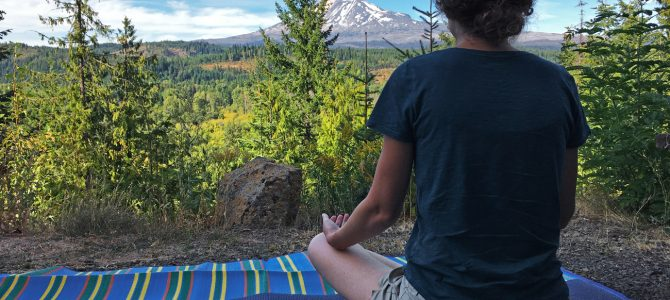Elk Meadows Part 1 – A Perfect Spot for Another SIBO Treatment