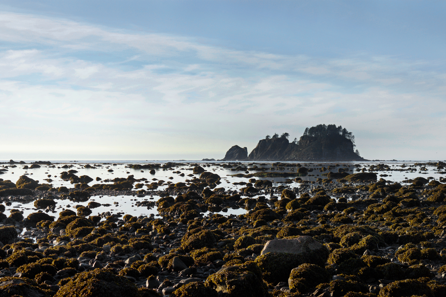 Beach at Cape Alava with rocky tide pools and a sea stack in the distance