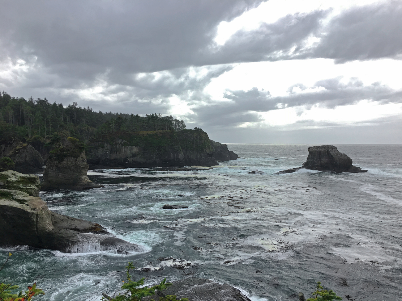 View of rocky coastline and sea stacks off shore from Cape Flattery