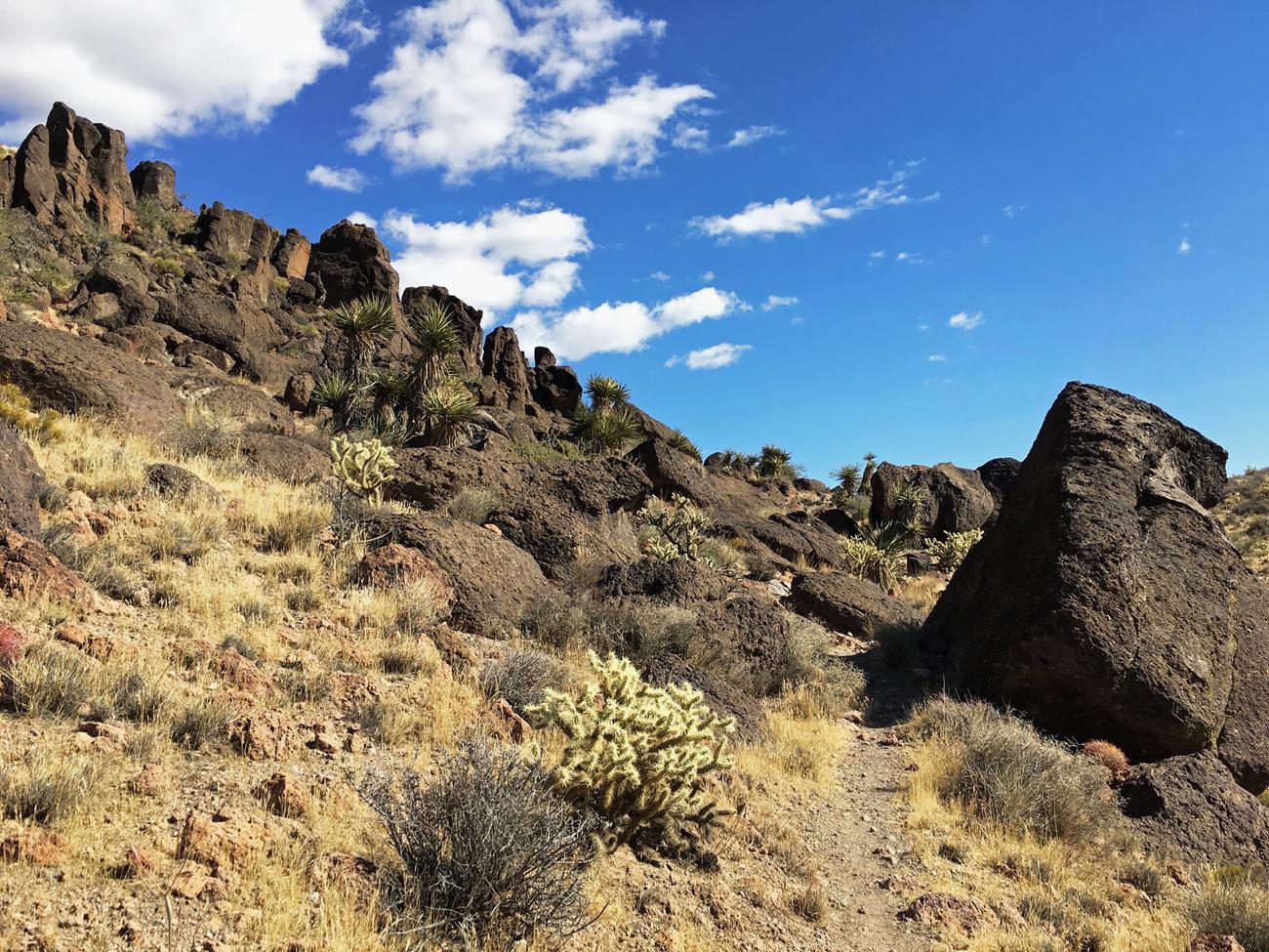 Barber Peak Loop Trail as it winds through some dark brown rock formations
