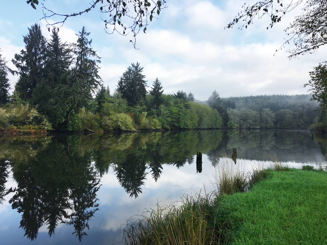 Reflections of evergreens in the glassy waters of the Hoquiam River adjacent to the Hoquaim River RV Park