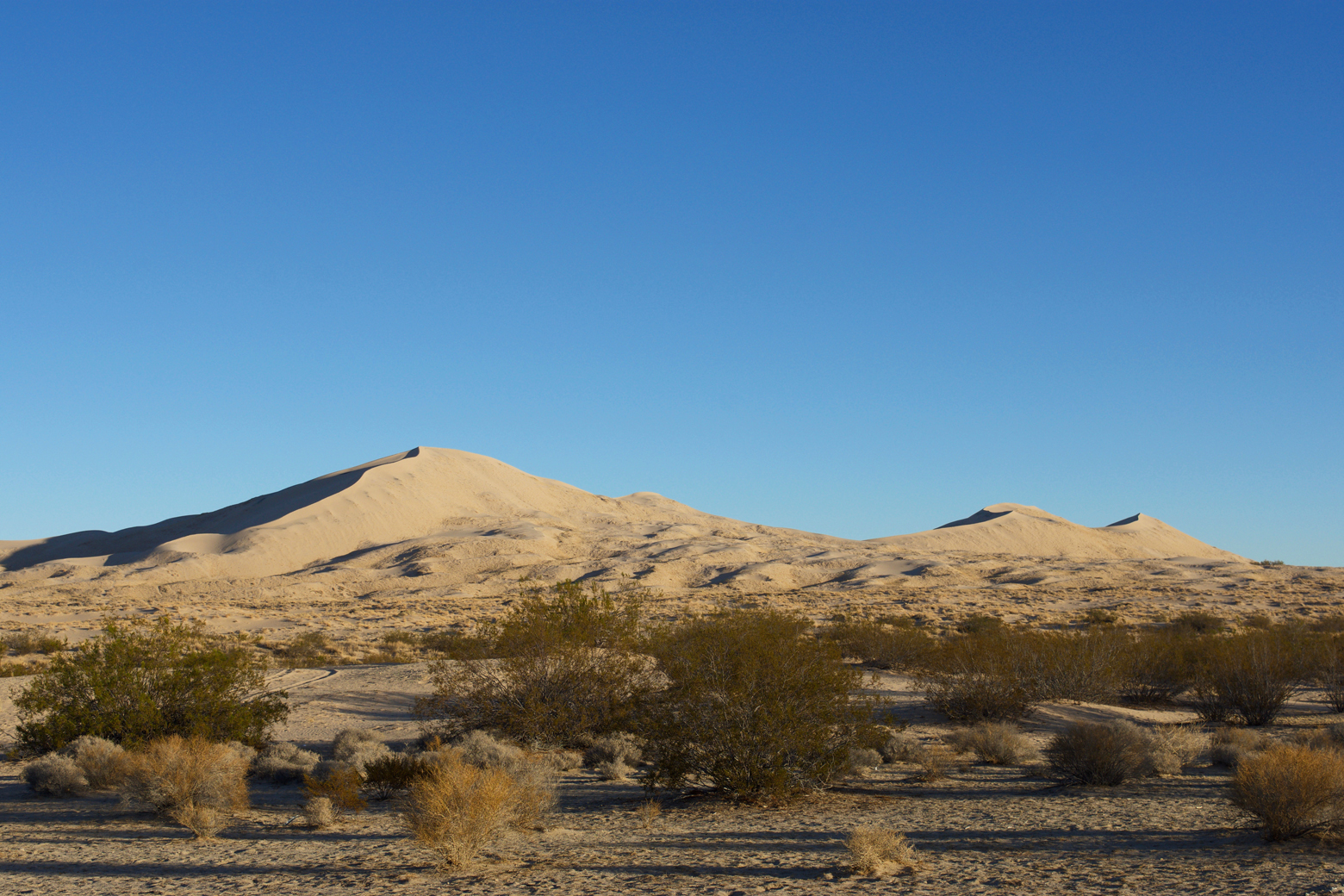 View of the three tall peaks of Kelso Dunes from our campsite