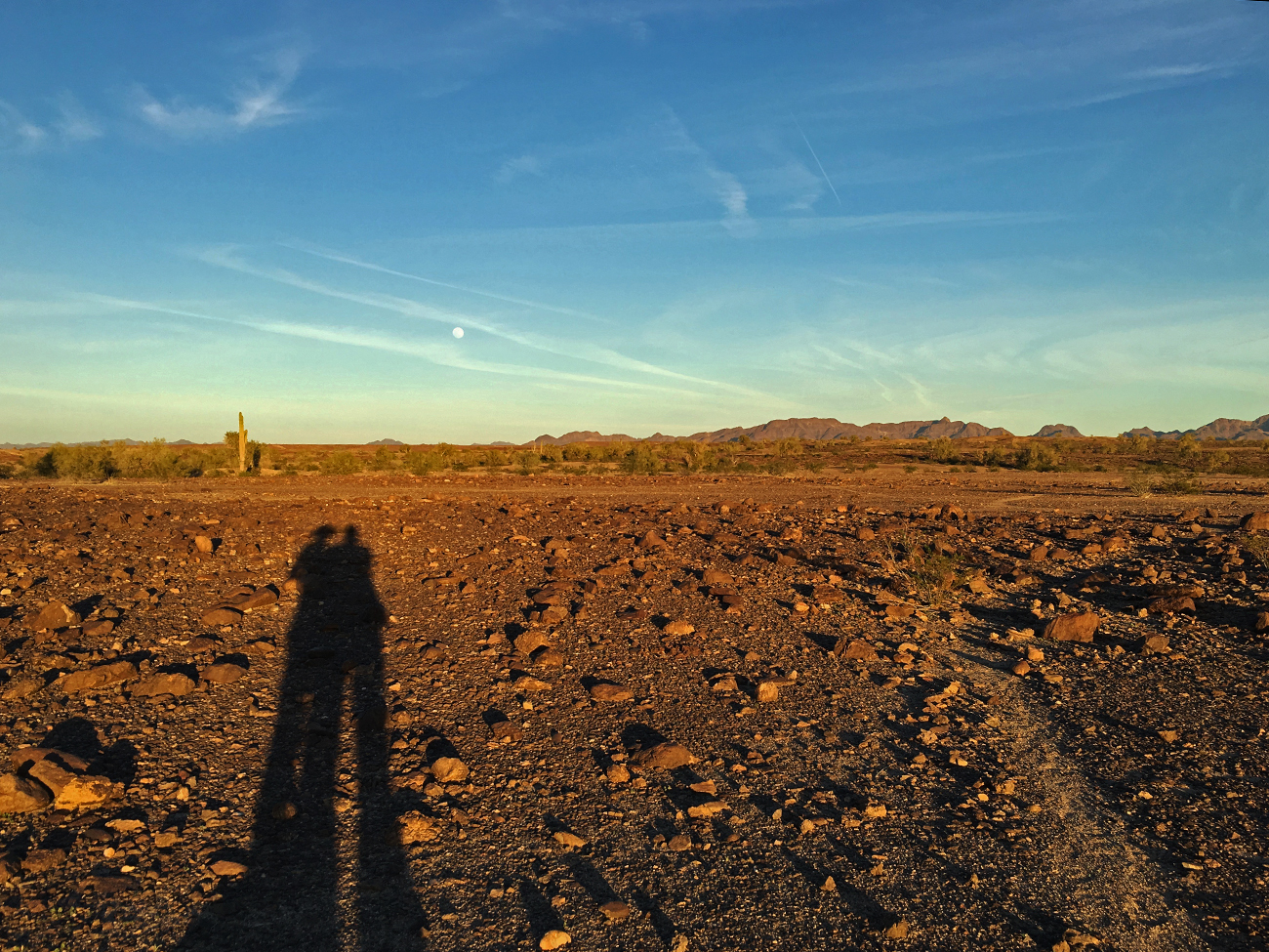 Our shadows stretching out into the desert with a saguaro in the distance and the moon starting to show in the sky