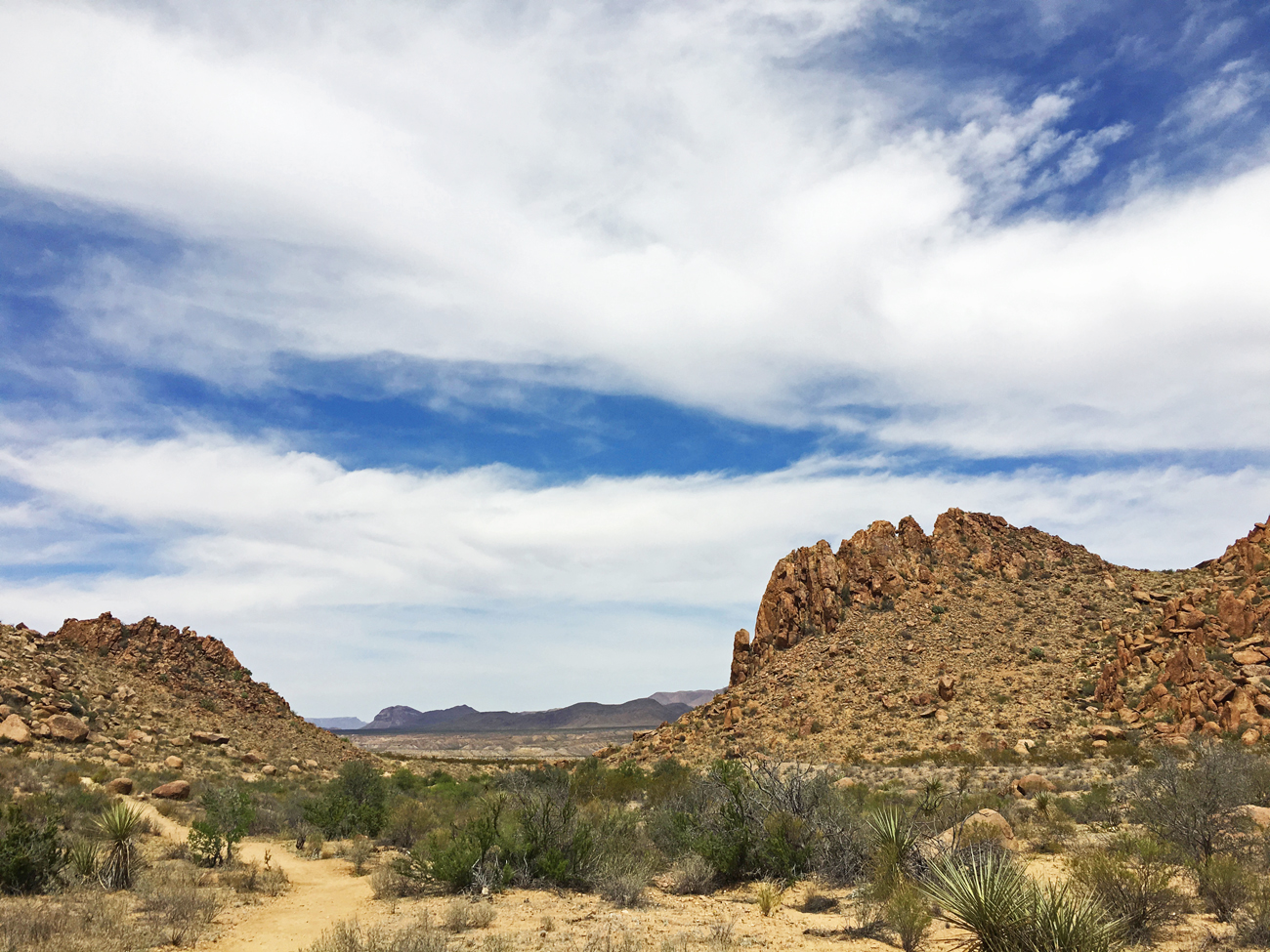 View of the lower portion of Grapevine Hills trail where it winds through a wide wash in Big Bend National Park