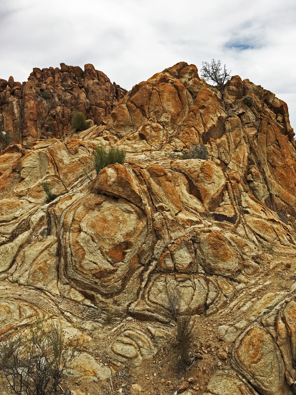 Interesting, geometric designs in one of the rocky outcrops on Grapevine Hills trail in Big Bend National Park