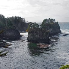 Olympic National Park – Weathering a Storm and Cape Flattery